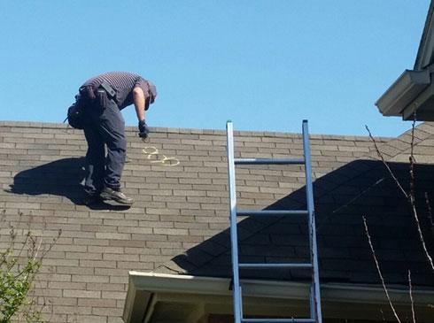 Marking damaged roof